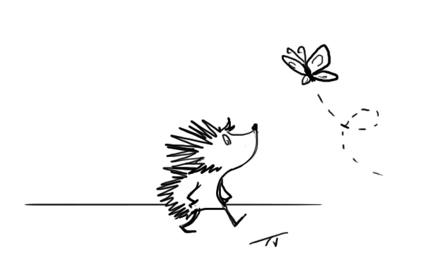 hedgehog walk
