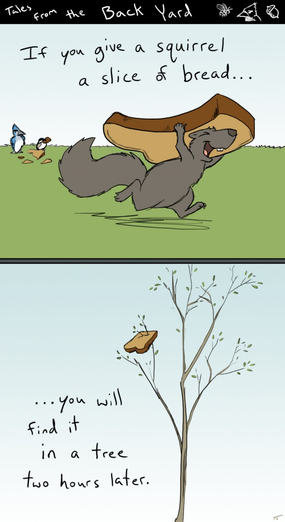 squirrel bread comic