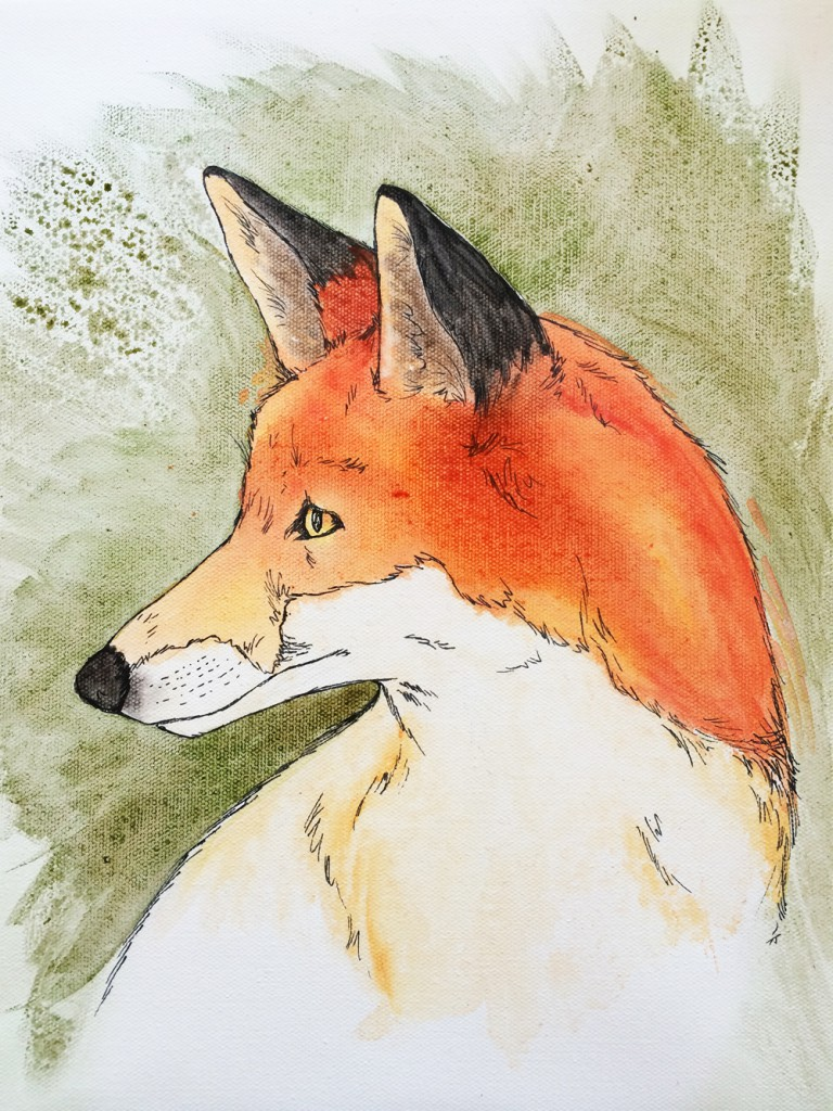 red fox - smaller